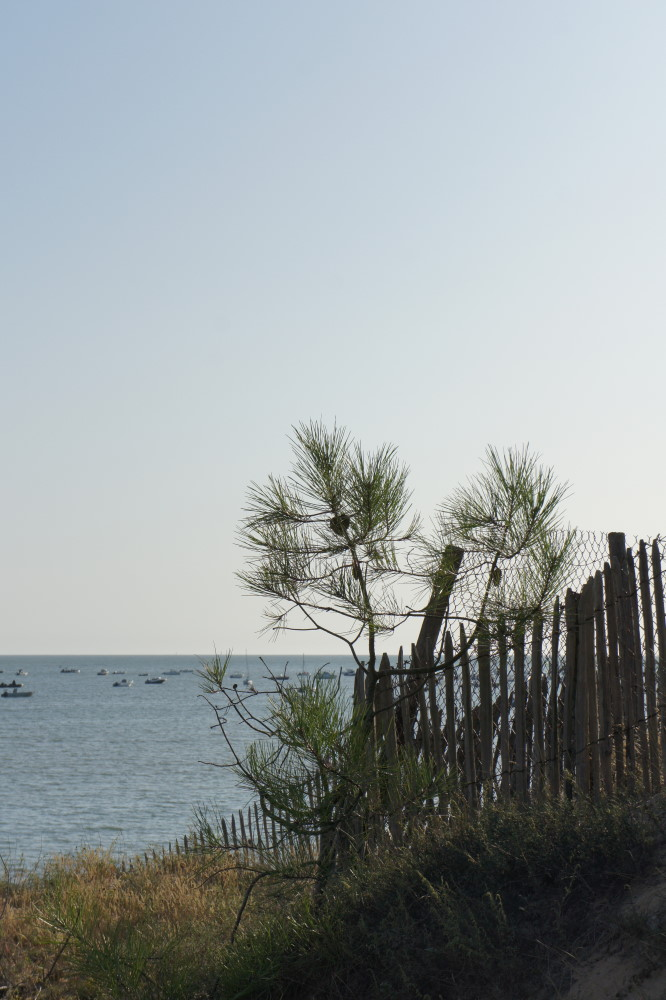 plage la tranche sur mer